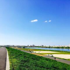 川/荒川/緑/空/青/わたしのお気に入り/... 土手沿いを歩くのが好きです☆ お気に入り…