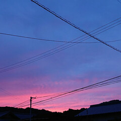 夕景 夕景。