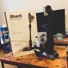 掃除機/Shark/黒/ブラック/家電は黒/Shark EVOFLEX/... 今の家で暮らし始めて 2年半 掃除機無し…