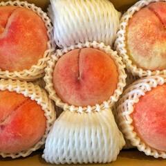 夏のお気に入り 夏のお気に入りフルーツ 白桃🍑