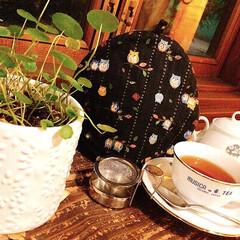 初投稿/わたしのお気に入り/優雅な時間/ティータイム/紅茶/お洒落なカフェ/... 先日行ったカフェでの写真📸  内装がおし…