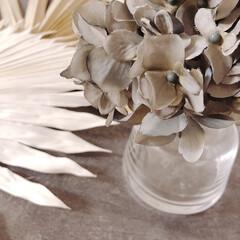 ホルムガード フローラ ベース 12cm ミディアム クリア Holmegaard Flora vase(花瓶、花器)を使ったクチコミ「友人からパームリーフ頂きました𖤣𖥧𖥣。 …」