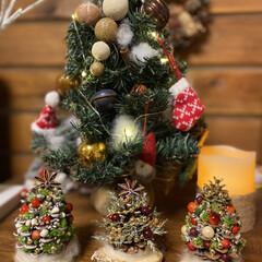 クリスマスツリー/松ぼっくりのツリー/クリスマスディスプレイ/リビング/玄関/3COINS/... クリスマスマスディスプレイ🎄🤶 松ぼっく…
