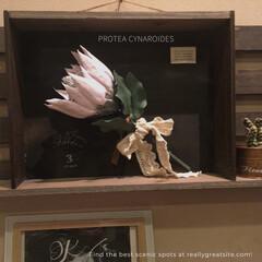 ディスプレイボックス/ディスプレイ棚/クレイ作品/DIY/雑貨/ハンドメイド リミ友の作品のディスプレイ棚💕 壁に飾り…