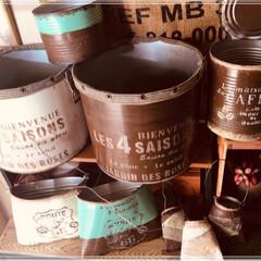 緑のある暮らし/リメ缶バッグ/多肉植物/100均/ダイソー/セリア/... リメ缶🥫  一斗缶を半分にカットしてもら…