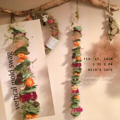 ドライフラワー/ガーランド/ガーランドアレンジ/クリスマス2019/リミアの冬暮らし/DIY/...  ホント久しぶりの投稿です♪ 色褪せてき…