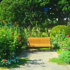 ベンチ/庭園/横浜/山手西洋館/おでかけワンショット 庭園の中のベンチです!絵本の中の世界のよ…