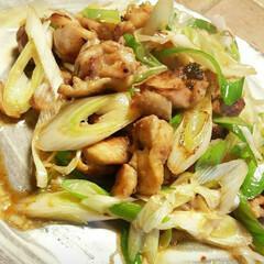 家庭料理/手料理/スピードメニュー/簡単メニュー/おうちごはん/おうち居酒屋/... 【🐔葱が美味しくなる鶏焼き🐔】  【材料…