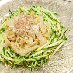 きゅうり/中華クラゲ/野菜料理/和え物/クラゲ/中華/... 【🥒👾中華クラゲ👾🥒】  塩蔵クラゲはた…