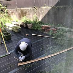 手作り/竹/流しそうめん/生活の知恵/雑貨/DIY/... 流しそうめん、竹から手作りしてもらった❤️(6枚目)