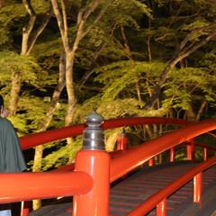 伊香保/河鹿橋/渋川/群馬/おでかけワンショット 新緑芽吹く河鹿橋で初夏のせせらぎを味わう