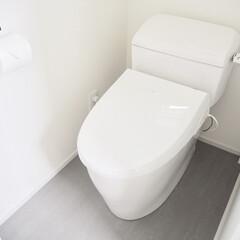 トイレットペーパーホルダー 63050(トイレ用ペーパーホルダー)を使ったクチコミ「うちのトイレ。  このロータンクがお気に…」