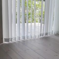 VBクリーナーセット [バーチカルブラインド専用] アプソン(モップ、雑巾)を使ったクチコミ「夏が近づいてきました(^^)  窓を開け…」