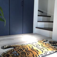 ラグ 絨毯 トラ DETAIL チベタンタイガーラグ スモール | DETAIL(カーペット、ラグ)を使ったクチコミ「お気に入りの玄関マット🐅💕   玄関入っ…」