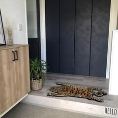 ラグ 絨毯 トラ DETAIL チベタンタイガーラグ スモール | DETAIL(カーペット、ラグ)を使ったクチコミ「我が家の玄関にはトラのマットが皆を出迎え…」
