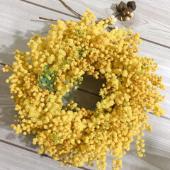 花のある生活/ミモザのリース/リース作り/花のある暮らし/ハンドメイド/雑貨 お花屋さんで綺麗なミモザを沢山買えたので…