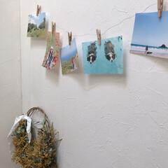家族写真/インテリア/写真の飾り方/蝋引き/雑貨 お気に入りの写真を蝋引きして飾ってみまし…