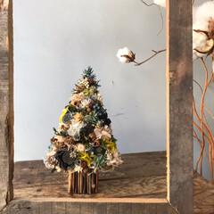 クリスマス雑貨/クリスマスツリー/クリスマス/雑貨/ハンドメイド ちょっと早いけれど クリスマスツリーリー…(1枚目)