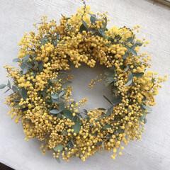 リース作り/ミモザリース/ミモザ/雑貨/ハンドメイド 先日、マルシェで買ったミモザと 家で咲き…