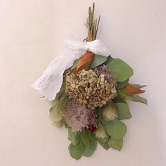 スワッグ/ドライフラワーのある暮らし/アジサイドライ/雑貨/インテリア お友達からもらった紫陽花がドライフラワー…(1枚目)