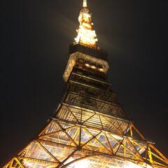 朱色/東京/観光/夜景 東京のシンボル🗼 スカイツリーより東京タ…