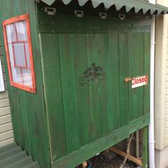 物置小屋/簡単/おしゃれ/暮らし/DIY/跳ね上げ式扉/... 丁度いいサイズが無かったので 野地板で物…