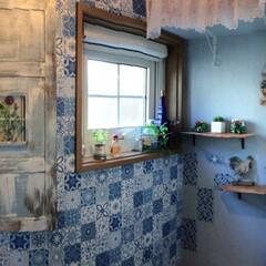 ブルー・ブルートイレ/トイレ/LIMIA手作りし隊/DIY/暮らし/リフォーム/... 節水トイレに交換したのを機に 壁紙(サン…