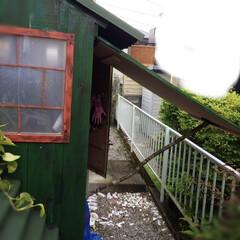 物置小屋/暮らし/DIY/おしゃれ/簡単/跳ね上げ式扉/... 物置小屋を作成しました。 跳ね上げ式扉に…