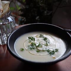 トウモロコシの冷製スープ/健康/LIMIAファンクラブ/LIMIAごはんクラブ/おうちごはんクラブ/LIMIAな暮らし 冷製コーンポタージュ🌽 茹で白いとうきび…