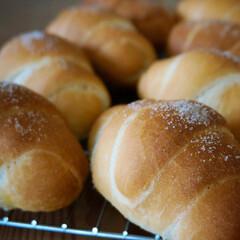 おうちカフェ/手作りパン/パン/塩パン/令和元年フォト投稿キャンペーン/フォロー大歓迎 ☆塩パン☆ ・ 雨と雷がすごくてびびって…