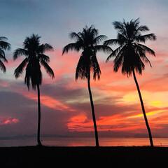海/夕日/タイ/おでかけ/旅行/はじめてフォト投稿 タイの夕日が綺麗すぎての一枚。