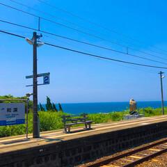 海好き/ひとり旅/和深駅/和歌山/無人駅/駅/... 和歌山県の和深駅。 無人駅で海が見えます…