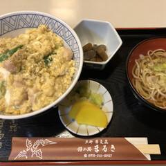 京都/親子丼/令和元年フォト投稿キャンペーン/はじめてフォト投稿/フォロー大歓迎/LIMIAごはんクラブ/... 京都のまるきの親子丼。