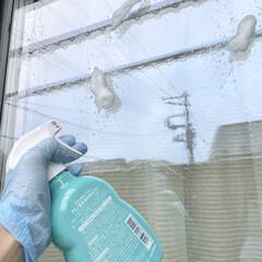 ウタマロクリーナー | ウタマロ(その他洗剤)を使ったクチコミ「窓掃除もウタマロクリーナーでします。 泡…」