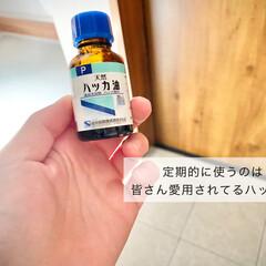 ハッカ油 20mL(滴下式) | 健栄製薬(アロマグッズ)を使ったクチコミ「ハッカ油はこの時期欠かせません。 玄関周…」