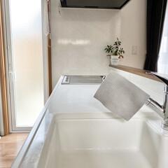 ドイツのフキンBLITZ 無地タイプ /(モップ、雑巾)を使ったクチコミ「キッチン丸洗いの水滴を拭き取るのはスポン…」