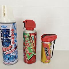 アース製薬 アースジェット 450ml | アース製薬(その他調理用具)を使ったクチコミ「室内用殺虫剤  アースジェットって昔から…」