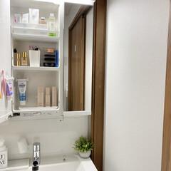鏡裏収納/洗面台収納/洗面台/収納/暮らし 洗面台  洗面台は真ん中の鏡裏にスキンケ…