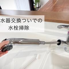 タカギ 浄水器一体型水栓 クローレ JY186MN-9NTF キッチンシャワー水栓(インパクトドライバー)を使ったクチコミ「わが家はタカギの浄水器一体型水栓。  フ…」