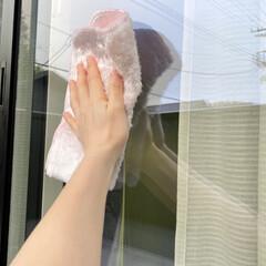 掃除グッズ/掃除アイテム/ふきん/お掃除クロス/窓掃除 窓掃除はダスキンのキッチン用のお掃除クロ…