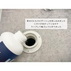 カビダッシュ ガンコすぎる最強カビ専用・特濃ストロングジェル  | リベルタ(防カビ洗剤)を使ったクチコミ「カビダッシュはぬめりにもいいので、排水溝…」(1枚目)