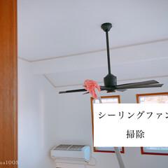 吹き抜け/モップ/シーリングファン/掃除 わが家の吹き抜けのシーリングファンは、掃…
