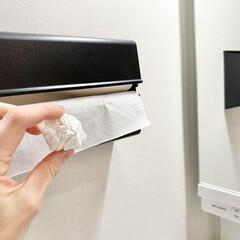ideaco/イデアコ ペーパータオルケース WALL PT/ウォールピーティー 市販のタオルペーパーキッチンペーパーが壁掛けで使えるおしゃれなケース(トイレ用ペーパーホルダー)を使ったクチコミ「ペーパータオルホルダー  ペーパータオル…」