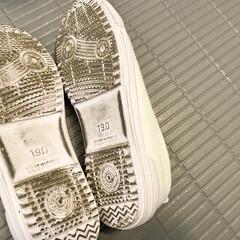 洗剤/つけ置き洗い/上靴/上靴洗い/あの洗剤 上靴をあの洗剤につけ置きして、洗ったあと…