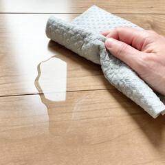 ドイツのフキンBLITZ 無地タイプ /(モップ、雑巾)を使ったクチコミ「スポンジワイプ  最近、またよく活用して…」