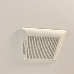 パッと貼るだけ 60cmに切れてる レンジフードフィルター ふんわりタイプ 5枚入 3091(その他調理用具)を使ったクチコミ「換気扇掃除のあとにフィルターを交換してい…」