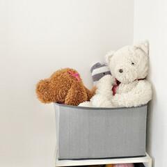 子供部屋/キッズスペース/人形/ぬいぐるみ収納/ぬいぐるみ ぬいぐるみ収納  2階の子供部屋は子供た…
