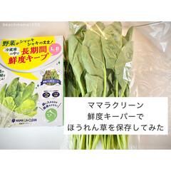 野菜保存/野菜収納/鮮度保持袋/鮮度キーパー/キッチン収納/キッチン雑貨 鮮度キーパーを使って野菜の保存をしていま…