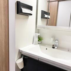 ideaco/イデアコ ペーパータオルケース WALL PT/ウォールピーティー 市販のタオルペーパーキッチンペーパーが壁掛けで使えるおしゃれなケース(トイレ用ペーパーホルダー)を使ったクチコミ「ペーパータオルホルダー  洗面所はペーパ…」