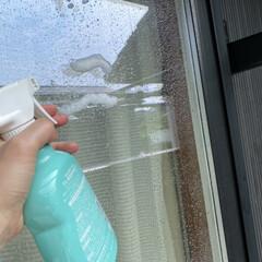 洗剤/掃除グッズ/ベランダ掃除/網戸掃除/窓掃除/ウタマロクリーナー 窓掃除もウタマロクリーナーで掃除していま…